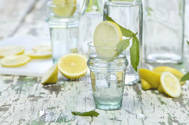Скибочками лимона і м'яти, рідке скло та пляшки — стокове фото