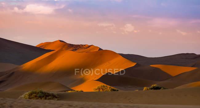 Намибия, Naukluft Национальный парк, пустыня Намиб, Sossusvlei, песчаных дюн на мертвых Vlei вечером — стоковое фото