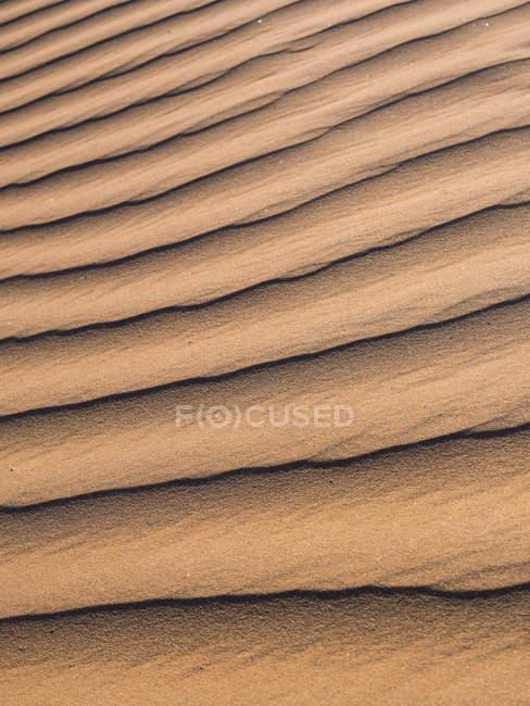 Африка, сооружения в песке, заповедник Кулала — стоковое фото