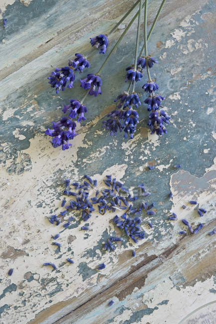Closeup view of Lavender blossoms on wood — Stock Photo