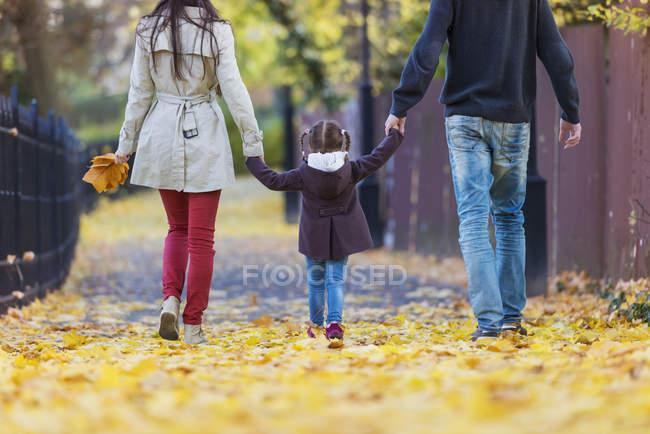 Семейная прогулка рука об руку в осеннем парке — стоковое фото
