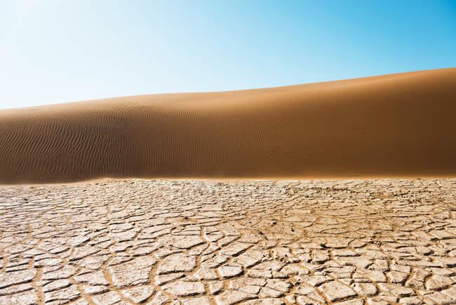 Namibie, désert du Namib, Sossusvlei, sèche fissuré terre, dune et bleu ciel — Photo de stock