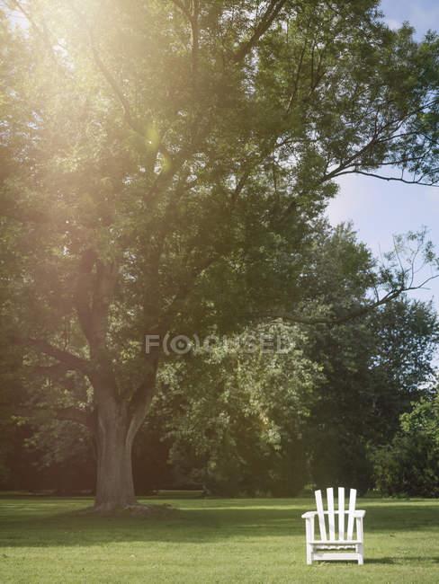 Chaise de jardin blanche vide de Hambourg, en Allemagne, dans un parc — Photo de stock
