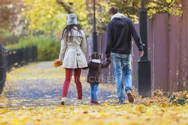 Passeggiate in famiglia mano nella mano nel parco autunnale — Foto stock