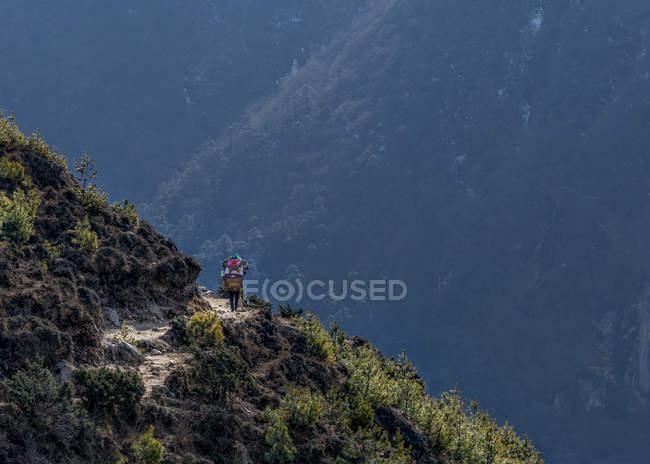 Nepal, Himalaya, Khumbu, trekker on hiking trail — Stock Photo