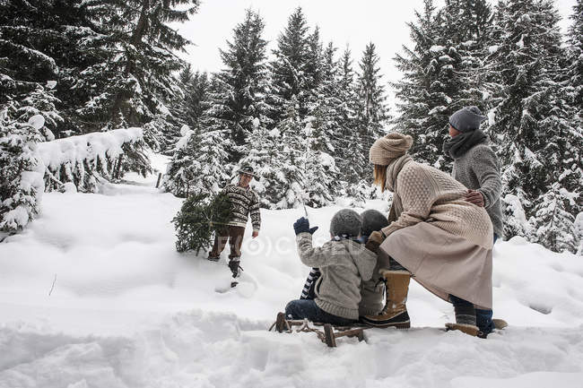 Austria, Altenmarkt-Zauchensee, man with Christmas tree and family together in winter forest — Stock Photo