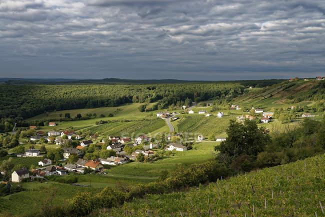 Австрия, Бургенланд, Феберг-ан-дер-Пинка, вид на деревню с виноградниками в дневное время — стоковое фото