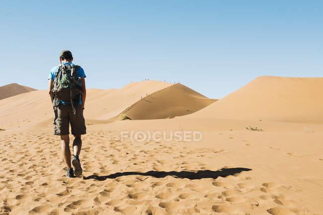 Namibia, Namib Desert, man with backpack walking through the dunes — Stock Photo