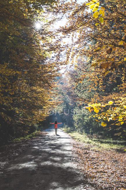 Vue arrière de la femme marchant dans la forêt automnale — Photo de stock