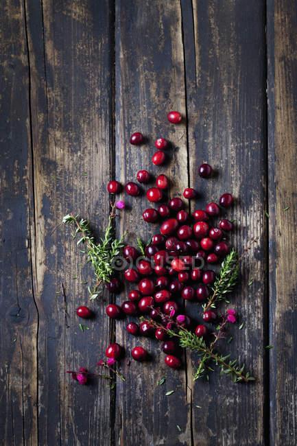 Cranberries frescos e heather em madeira escura — Fotografia de Stock