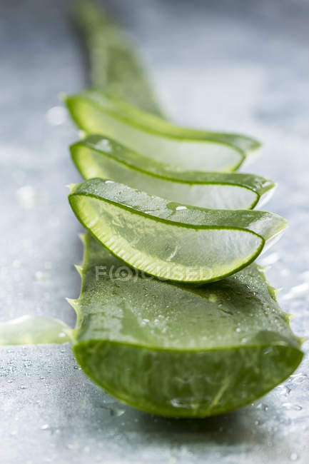 Sliced stem of Aloe Vera — Stock Photo