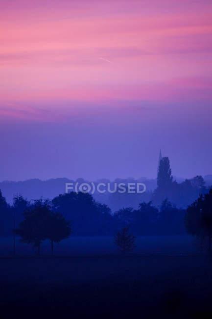 Allemagne, Rhénanie-du-Nord-Westphalie, Minden, crépuscule dans la forêt alluviale — Photo de stock
