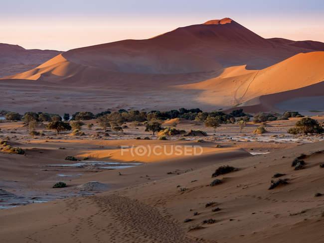 Namibie, Parc National de Namib, désert du Namib, Sossusvlei, Dead Vlei, dunes de sable en soirée — Photo de stock