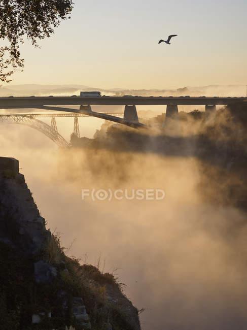 Ponte Luiz I à noite — Fotografia de Stock