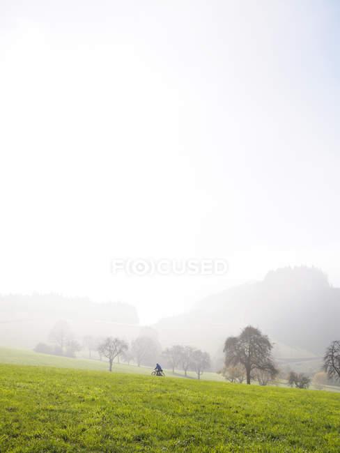 Германия, Шварцвальд осенью, езда велосипедиста в утреннем тумане — стоковое фото