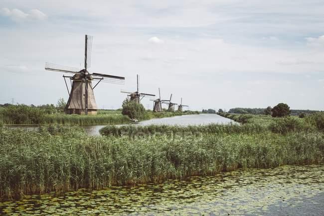 Países Bajos, Kinderdijk, fila de molinos de viento durante el día - foto de stock