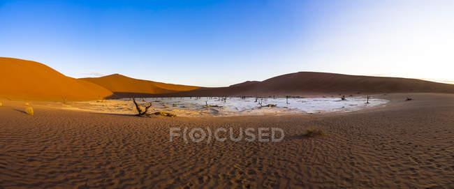 Namibia, dune del Namib Naukluft, Dead Vlei, al deserto del Namib — Foto stock