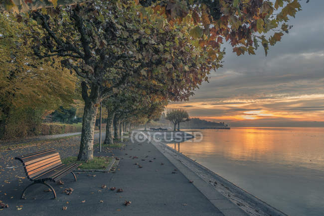 Bank am Bodensee — Stockfoto