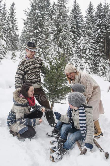 Австрия, посмотрите, счастливая семья с елкой в зимнем лесу — стоковое фото