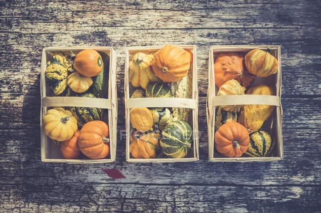 Верхний вид трех корзин декоративных тыкв на деревянной поверхности — стоковое фото