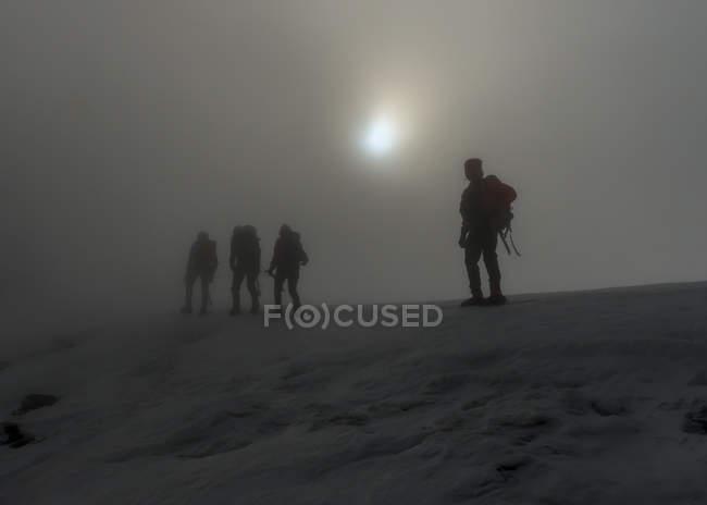 Schweiz, Berner Westalpen, Bergsteiger zu Fuß im Nebel Balmhorn Region — Stockfoto