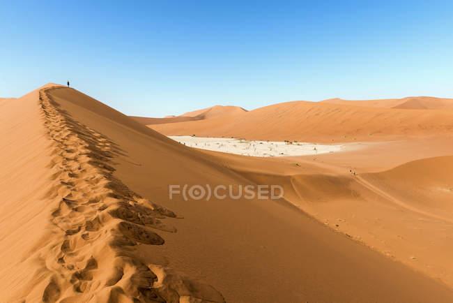 Namibia, deserto del Namib, Duna Rossa e Deadvlei — Foto stock