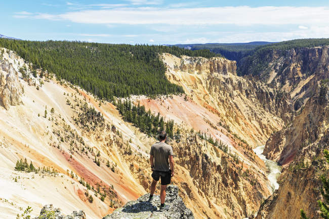 Tourist looking to Grand Canyon of the Yellowstone — Stock Photo