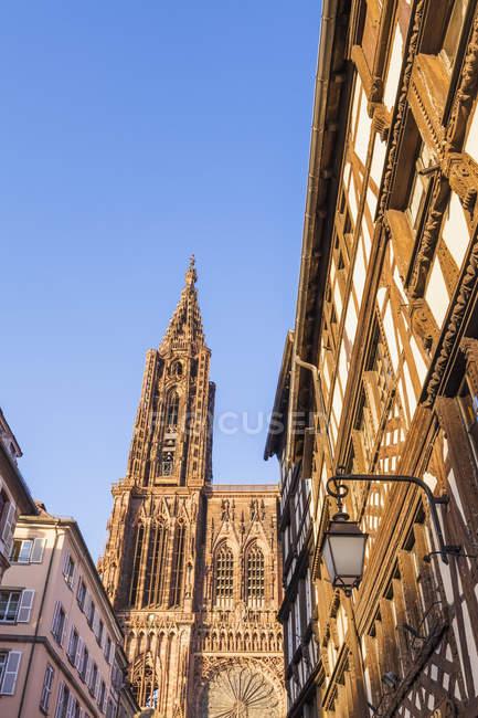 Francia, Alsazia, Strasburgo, Cattedrale di Strasburgo e casa a graticcio — Foto stock