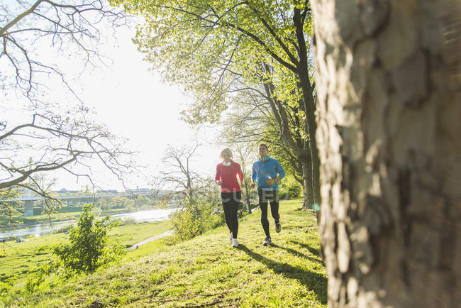 Mature couple jogging in park — Stock Photo