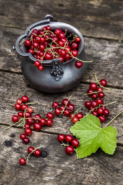 Fresh red currants in zinc bowl — Stock Photo