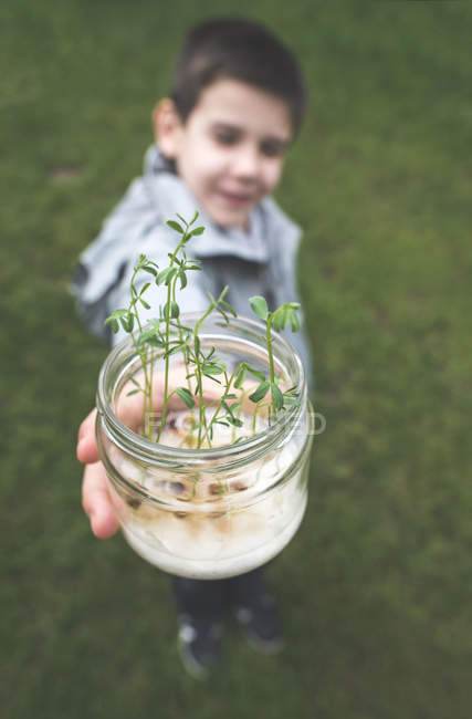 Garçon tenant un pot avec des graines germées — Photo de stock