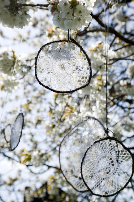 Atrapador de sueños hecho de manteles de ganchillo viejo colgando en flor de cerezo - foto de stock