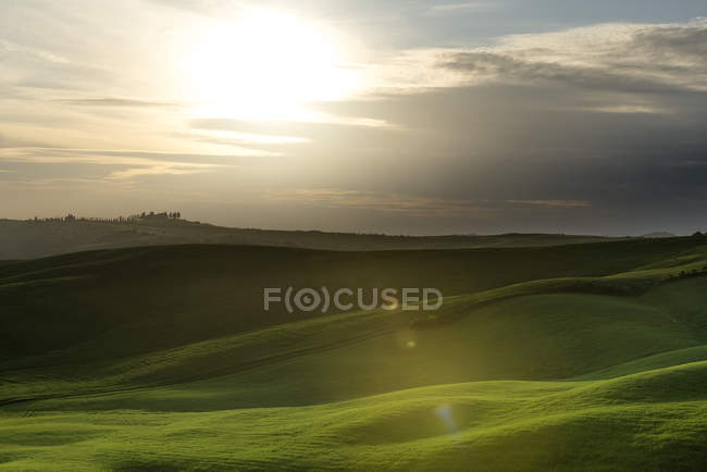 Rolling landscape at backlight, Val d'Orcia, Toscana, Italia — Foto stock