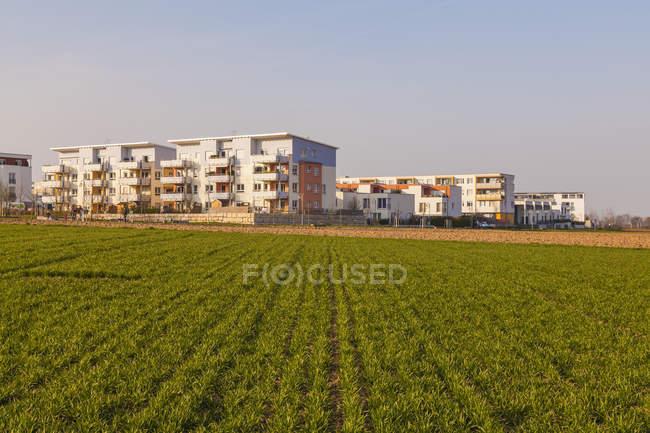 Germany, Ludwigsburg, development area, multi-family houses — Stock Photo