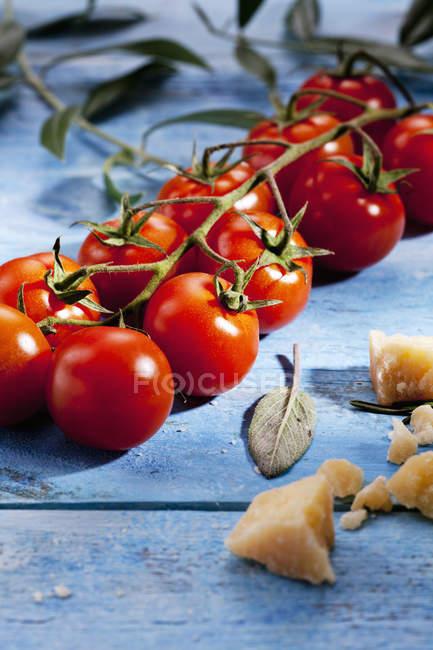 Вишневі помідори з Чилі стручків і пармезаном — стокове фото