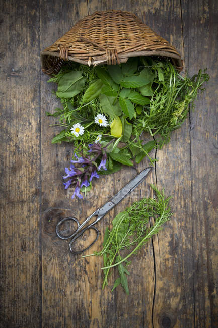 Wickerbasket of different wild herbs and edible flowers — Stock Photo