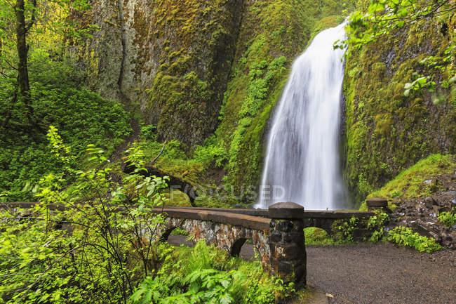 USA, Oregon, Multnomah County, Columbia River Gorge, Wahkeena fällt — Stockfoto
