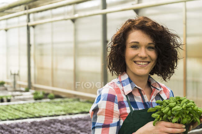 Young female gardener holding potted plant in plant nursery — Stock Photo