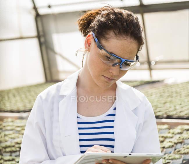 Young female gardener examining plants in nursery — Stock Photo