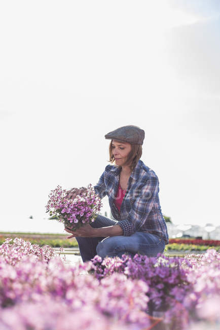 Woman checking potted flower — Stock Photo