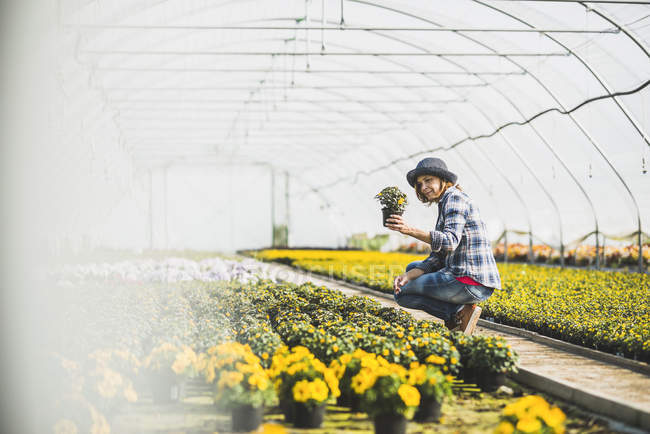 Woman checking potted flowers — Stock Photo