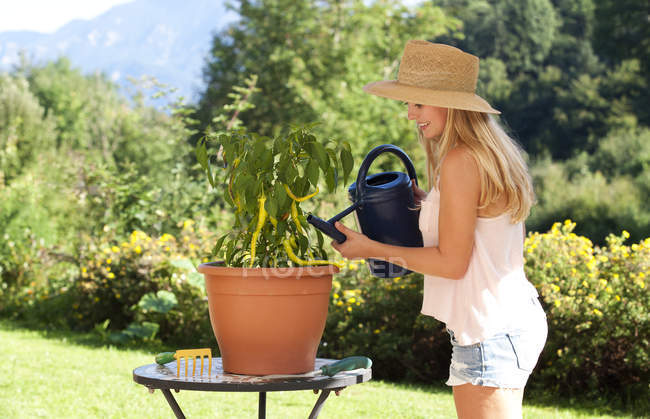 Young woman watering potted plant in a garden — Stock Photo