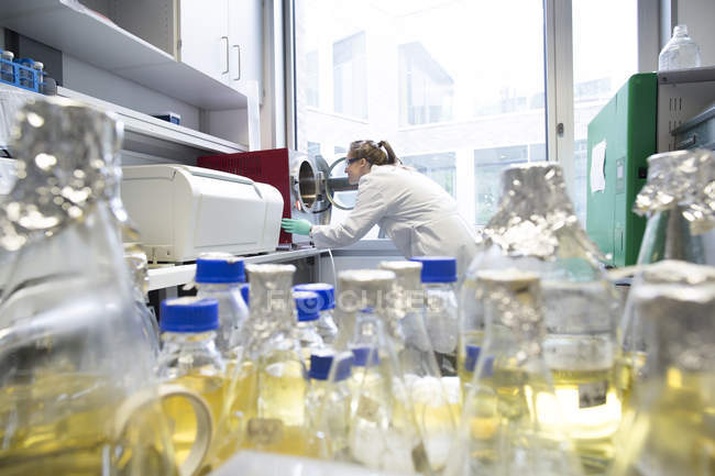 Young female scientist working at biological laboratory, looking in autovclave — Stock Photo