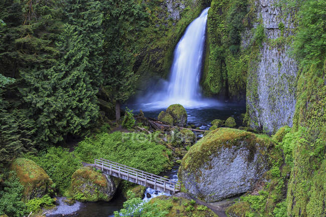 США, Орегон, округа Малтнома, ущелье реки Колумбия, Wahclella падает — стоковое фото