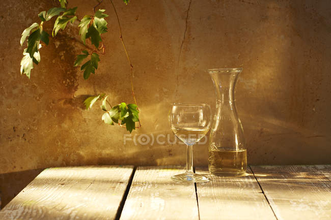 Still life with glass and carafe of white wine and wine leaves — Stock Photo