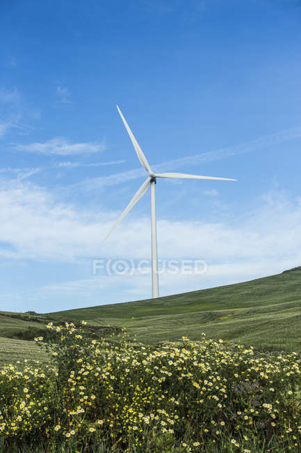 Spain, Andalusia, Tarifa, Wind wheel on the green hill — Stock Photo