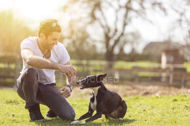 Man training his dog on a meadow — Stock Photo