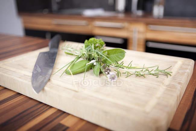 Verschiedene Gewürze und ein Küchenmesser auf Schneidebrett — Stockfoto