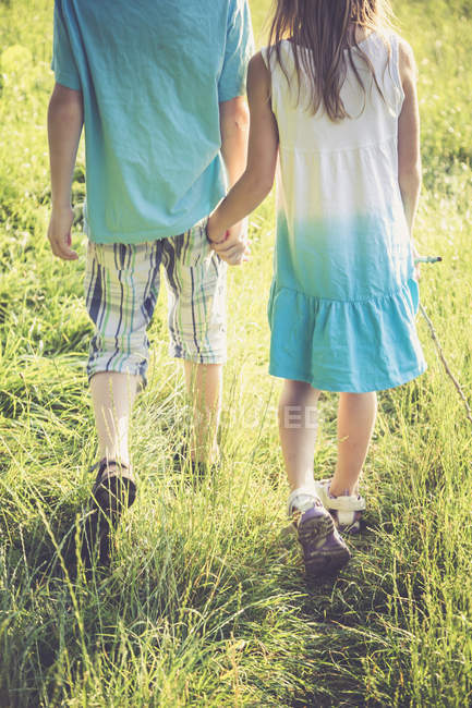 Brother and sister walking hand in hand on a meadow — Stock Photo