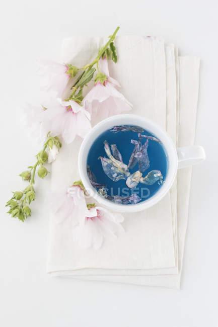 Tasse de thé de Mallow et fleurs, vue de dessus — Photo de stock